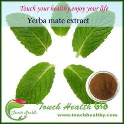 Touchhealthy Supply yerba mate extract/yerba mate extract powder/yerba mate supplier