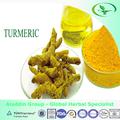 Naturelles usine fournir le curcuma huile/curcuma huile/oléorésine de curcuma