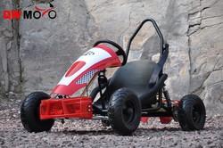 49cc Go Kart quad bike mini motor gas Go Kart racing Go Kart with CE QWMOTO