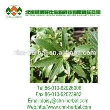 Best Selling langehead atractylodes rhizome extract 10:1