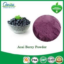 Hot Sale Brazil Acai Berry Powder