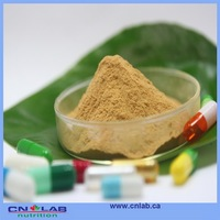 High Quality Organic Herbal Extract Spica Prunellae Extract/Prunella Vulgaris Extract For Sale