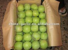 Chinese GALA Apple 9kg/10kg/15kg/18kg/20kg;