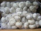 Natural Garlic