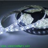 SMD 5050 6000K LED Strip Lights