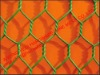 factory!!!!!!! shijiazhuang/anping hexagonal double twisted weaving wire mesh (small Chicken/Rabbit/Poultry Wire mesh)