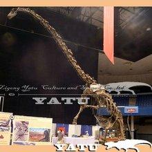 artificial skeleton dinosaur exhibition 2012