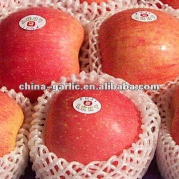 Mejor precio Fuji manzanas, De yantai, De China