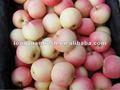 2012 jugosa de color rojo manzana de la gala