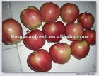 fresh fruit red star apple with market price high quality