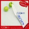 "4"" inch long Full/all zirconia ceramic kitchen knife"