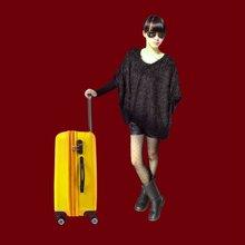 Trolley luggage trolley bag