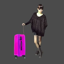 OEM Promotion trolley bag