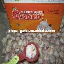 2012'Crop China Fresh Garlic Supplier / Farmer / Producer