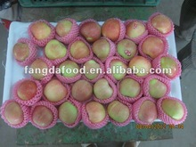 2014Fresh Red Star Apple /Fresh Fruits