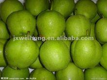 Fresh early matured su pear