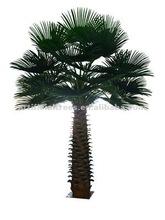 New style Specail Big Palm Tree
