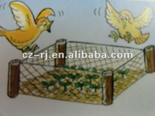 PE strong agricultural bird preventing net for fruit crop