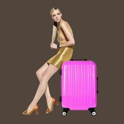 OEM Travel design luggage