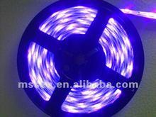 2012 most hot led strip Smd 5050 30 rgb led strip light