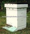البلاستيك خلية نحل لتربية النحل