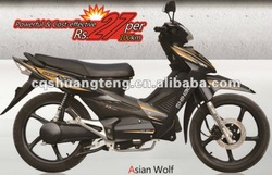 2012 new design Asin wolf 1000W electric motorcycle