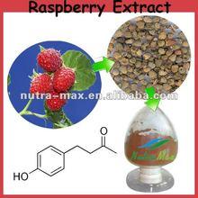 Aralia Elata Extract (4:1 or According to customer needs)