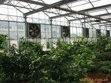 50 Inch Wall Axial Panel Fan/Exhaust Fan for Greenhouse