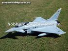 Freewing Typhoon Eurofighter rc model plane 360 degre