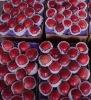 2012 yantai fresh huaniu apple