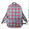 2012 fashionable travel backpack