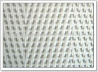 Polyester Sludge Dehydration wire mesh