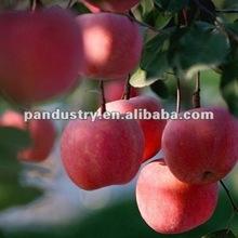 Foliar fertilizer 6-BA ( Benzylaminopurine ) 98%tc