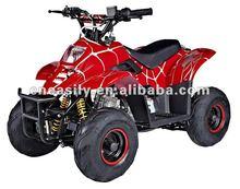 110cc ATV /Quad bike