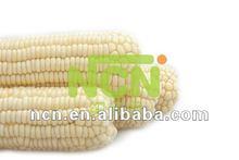 Frozen sweet white corn