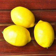 2012 new design Artificial beautiful lemon fruit