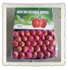 2012 New season shangdong yantai fresh fuji apple