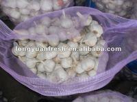 China red garlic price