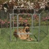 dog pen dog kennel
