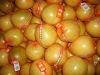 Shaddock Pomelo in China