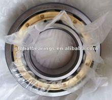 2012 WZA cylindrical roller bearing NU319 EM