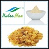 100% Natural mastic extract