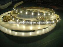 2012 Super brightness cool white 12V 3528 SMD waterproof flexible strip led light