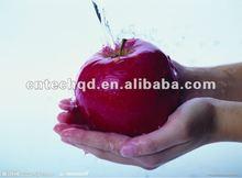 Christmas big apple