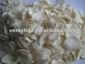 tierras de cultivo propio ajo deshidratado 2012
