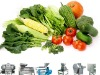 vegetable, fruit processing machine /cabbage,ginger,pepper,tamato,aloe,garlic,onion
