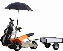 Cheap Electric 3 wheel car single seat golf scooter (SX-E0906-3A)