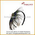 Pluma del pavo real accesorio para el pelo