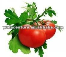 100% organic lycopene