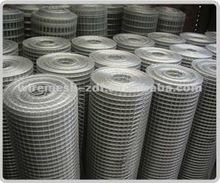 field galvanized welded wire mesh/wire mesh /netting (factory)